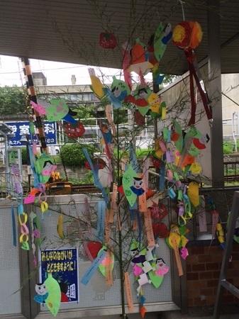 tanabata2018-3.jpeg